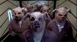 Pigfart