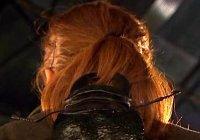 Hairbeetle